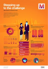 IBM-Infographic-2014